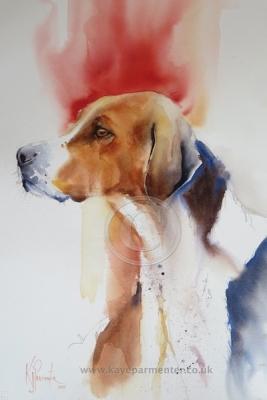 hound-24[1]
